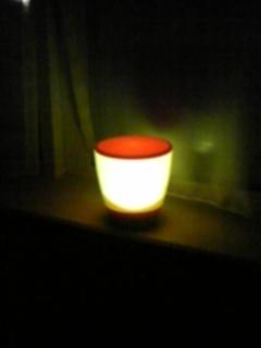 エコ ランプ